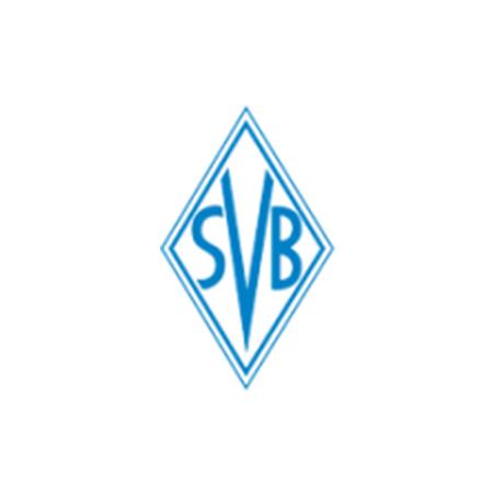 Sportvereinigung SVG